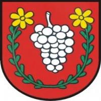 Pohár starostu obce V. Zálužie 3. kolo SP