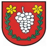 Pohár starostu obce Veľké Zálužie  2.kolo SP