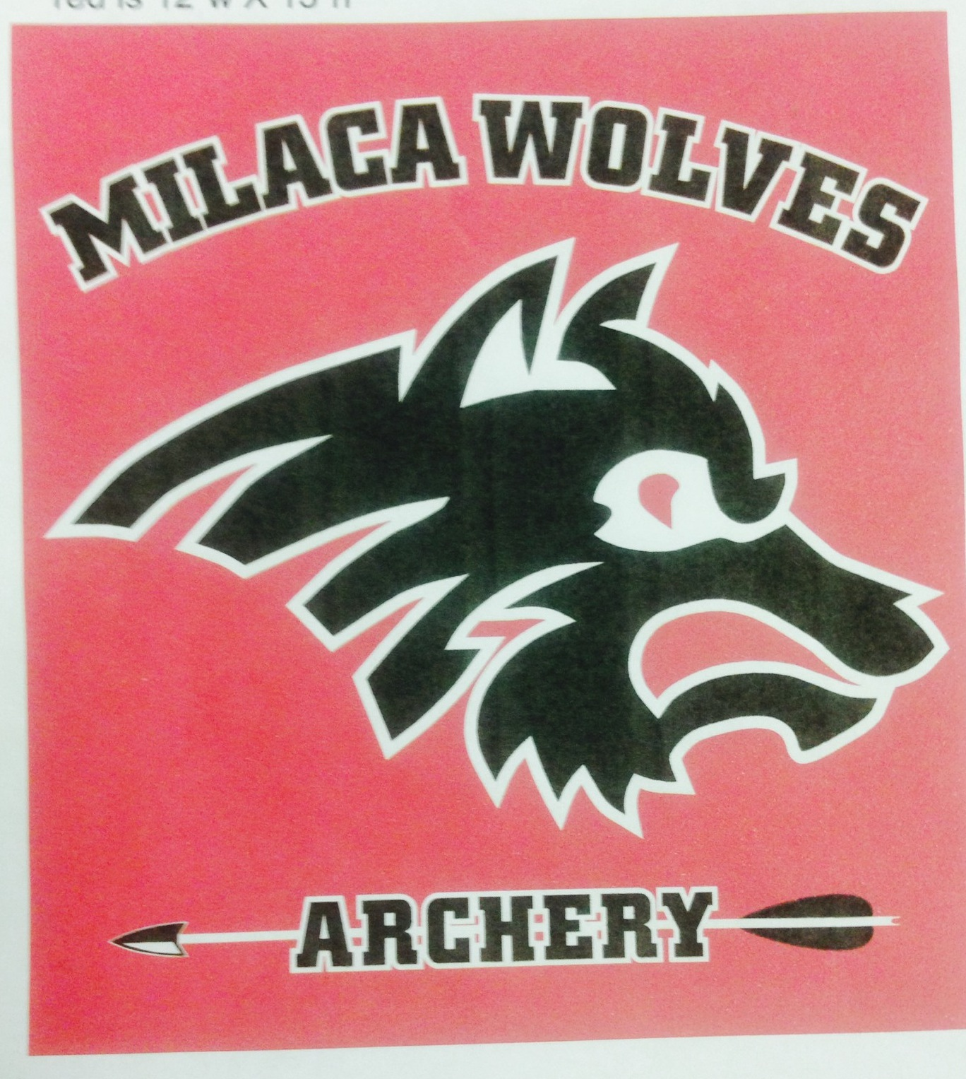 Milaca Archery Team